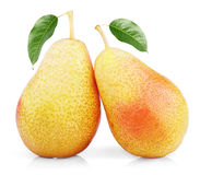 Two sweet red yellow pear fruits Stock Photos
