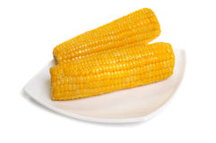 Two sweetcorn cobs  on plate Royalty Free Stock Photo