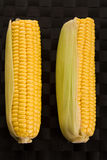 Two sweetcorns Royalty Free Stock Photo