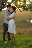Two sweethearts kissing under tree at sunset Royalty Free Stock Image