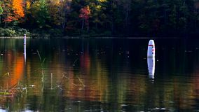 Two swim buoys at Norton Pond, Maine. Video of two swim buoys and floating leaves at Norton Pond in Lincolnville, Maine with fall foliage colors reflecting off stock video footage