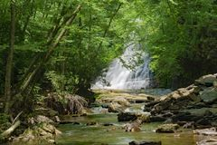 Free Two Swimmers At The Base Of Cascades Falls, Giles County, Virginia, USA Stock Images - 118251174