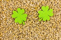 Two symmetrical green leaves of felt large on the background of grains base of Saint Patrick stock photo