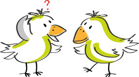 Two talking birds Stock Images