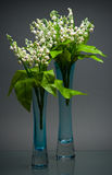 Two tall glass vases with spring bouquets on gray Royalty Free Stock Images