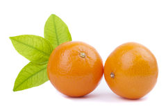 Two tangerine with green leaf Royalty Free Stock Photo