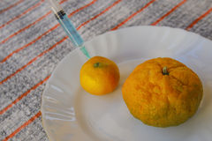 Two tangerine with syringe for hormone Royalty Free Stock Photography