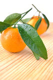 Two tangerines. With water drops on wooden table Royalty Free Stock Photo