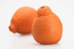 Two tangerines. Two fresh orange juicy florida tangerine isolated Stock Images