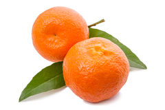 Two tangerines with leaves Royalty Free Stock Photos
