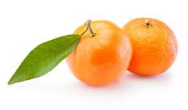 Two tangerines oranges fruit on white background. Two tangerines oranges fruit on a white background stock photos