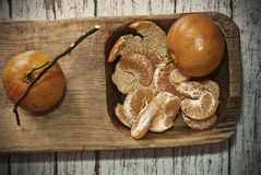 Two tangerines royalty free stock images