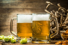 Two tankard beer with wheat and hop on wooden table. And empty wooden background Royalty Free Stock Images