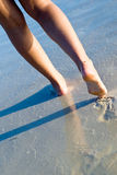 Two tanned women legs walking on beach. Two tanned women legs walking on sand beach Royalty Free Stock Photos