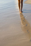 Two Tanned Women Legs Walking On Sand Beach Royalty Free Stock Photo