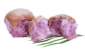 Two taro rolls Royalty Free Stock Images