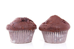 Two tasteful chocolate muffins Stock Photography