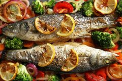 Two tasty baked sea bass fish with garnish. Closeup Stock Photo