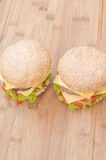 Two tasty cheeseburgers with lettuce, beef, double cheese and ketchup Royalty Free Stock Photos