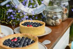 Two tasty cheesecake with fresh blueberries and raspberries on a wooden background. Candy bar Stock Images