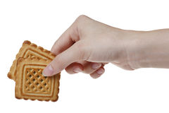 Two tasty cookies in woman's hand Stock Photography