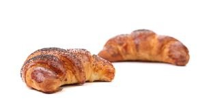 Two tasty croissants with poppy. Royalty Free Stock Photography