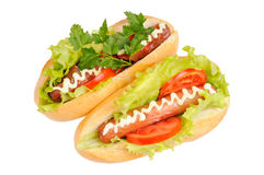 Two tasty and delicious hotdog Royalty Free Stock Photo