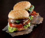Two Tasty Hamburgers Stock Photography