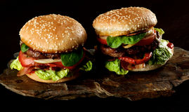 Two Tasty Hamburgers Stock Image