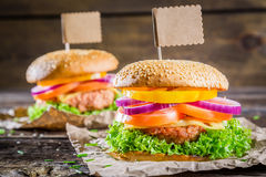 Two tasty homemade burgers Stock Images