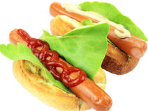 Two tasty hot dog Stock Image