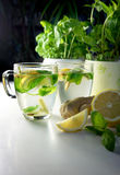 Two teacups with fresh peppermint, ginger and lemon Royalty Free Stock Images