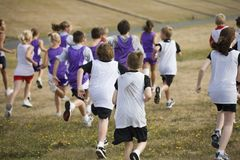 Two Teams of Cross Country Runners Stock Photo