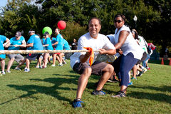 Two Teams Pull Ropes In Adult Tug-Of-War Fundraiser Stock Images