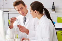 Two Technicians Working In Laboratory. Holding Test Tube Royalty Free Stock Images