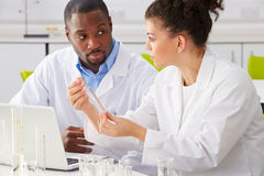 Two Technicians Working In Laboratory. Looking At Each Over stock image