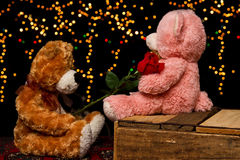 Two Teddie bear with white with red rose sitting Royalty Free Stock Photo
