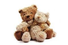 Two teddies Stock Image