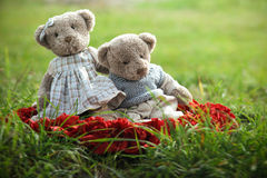 Two TEDDY BEAR Royalty Free Stock Image