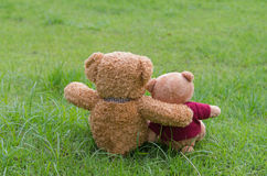 Two TEDDY BEAR brown color sitting on grass Royalty Free Stock Images