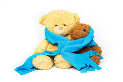 Two teddy-bear friends. Two teddy bears, bigger and smaller, are sitting close to each other wrapped in one cozy blue scarf Stock Image