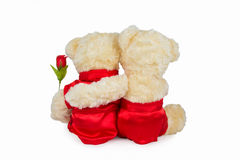 Two teddy bear sitting back side Stock Image