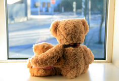 Two teddy bears Stock Photography