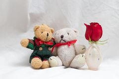 Two Teddy Bears as Friends Hugging each other with a Red Rose. Pair of best friend teddy bears sitting together hugging each other with a red rose in a white Royalty Free Stock Photos