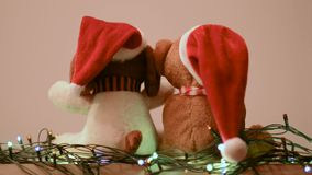 Two teddy bears enjoying Christmas and new year eve stock video