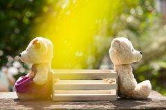 Two teddy bears feeling heartbroken sitting opposite a wooden box in the middle. Concept of love understanding and tenderness. With lens flare, Natural royalty free stock photography