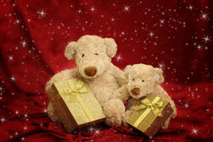 Two teddy bears with gift box on red stars background Stock Images