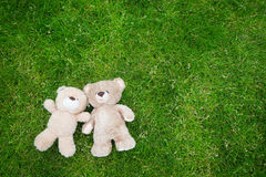 Two teddy bears laying down for Valentine background Stock Images