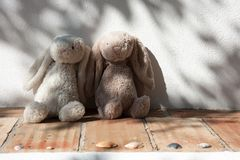 Two teddy bears, in love Stock Photography