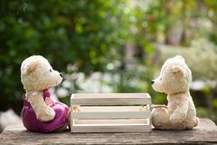 Two teddy bears in love sitting opposite a wooden box in the mid. Dle.  Concept of love understanding and tenderness.  With lens flare, Natural background Stock Image